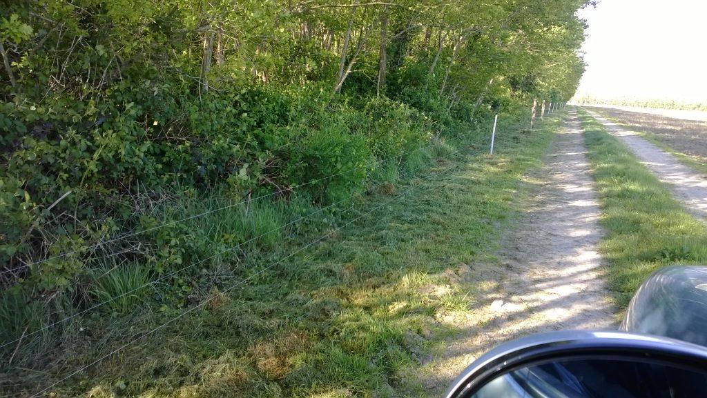 clôtures photo